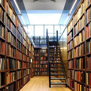 Библиотеки Майи